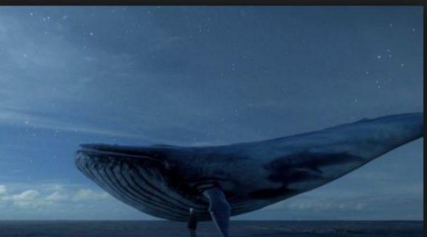 Resultado de imagem para baleia azul e crise existencial