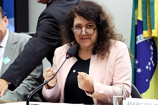 Deputada federal Christiane Yared (PR-PR). Foto: Vinícius Loures/Arquivo Câmara dos Deputados