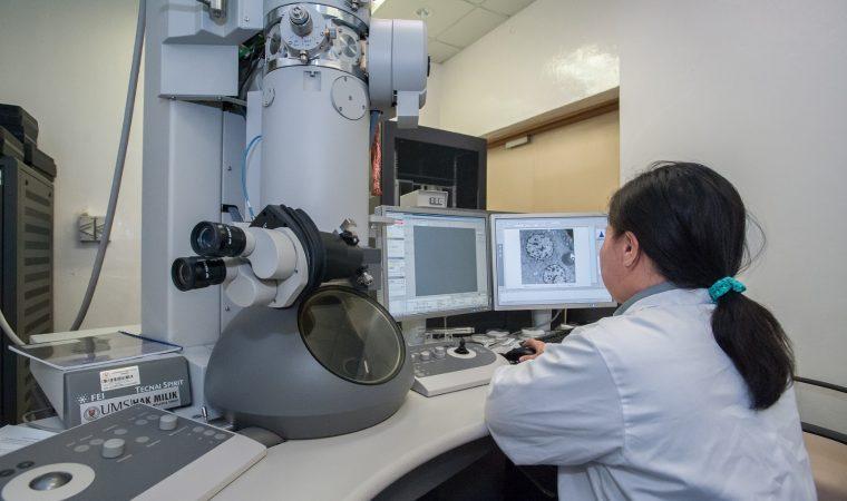 Nada é mais fascinante no mundo da tecnologia que a computação na medicina