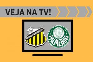 Novorizontino x Palmeiras.