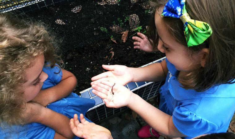 Crianças aprendem a cuidar do Meio Ambiente brincando